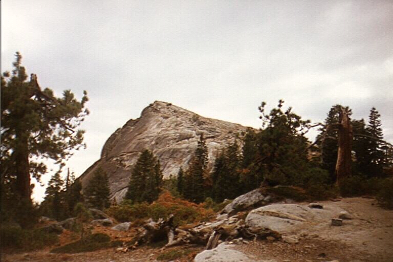 fresno dome how tall